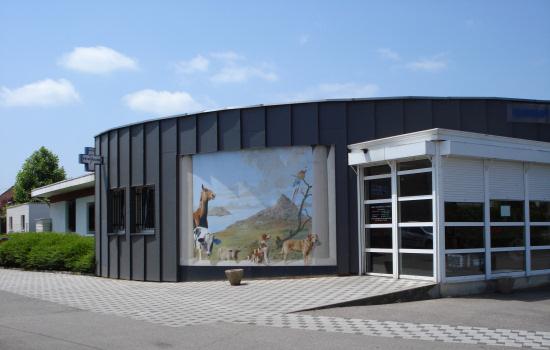 Cliniques v t rinaires lun ville et saint nicolas de port la sant animale en lorraine avec - Clinique veterinaire saint nicolas de port ...